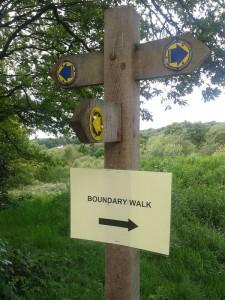 Boundary-Walk2