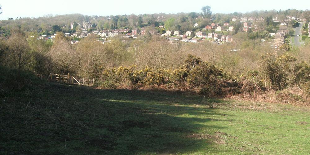 Palesgate Meadow near The Ghyll