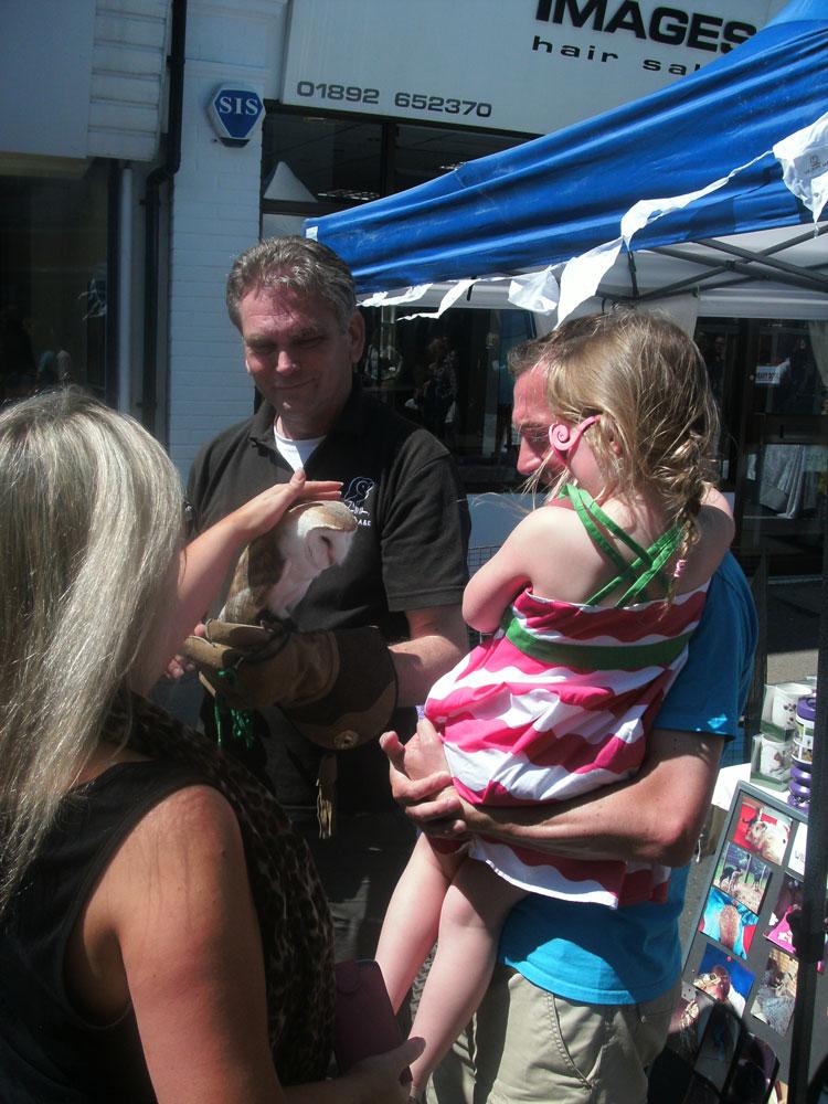 Mascot 'Ozzie', Wildlife A&E's Barn Owl