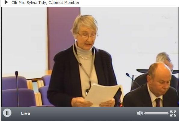 Councillor Sylvia Tidy East Sussex County Councillor for Crowborough