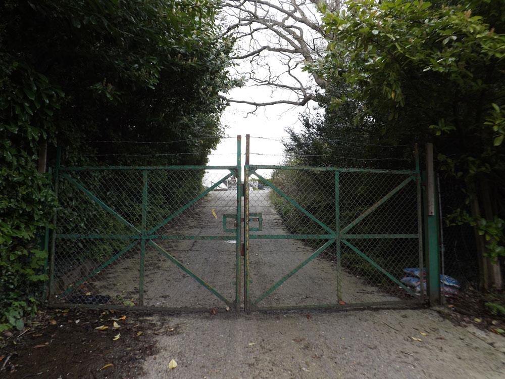 Millbrook Nursery Crowborough