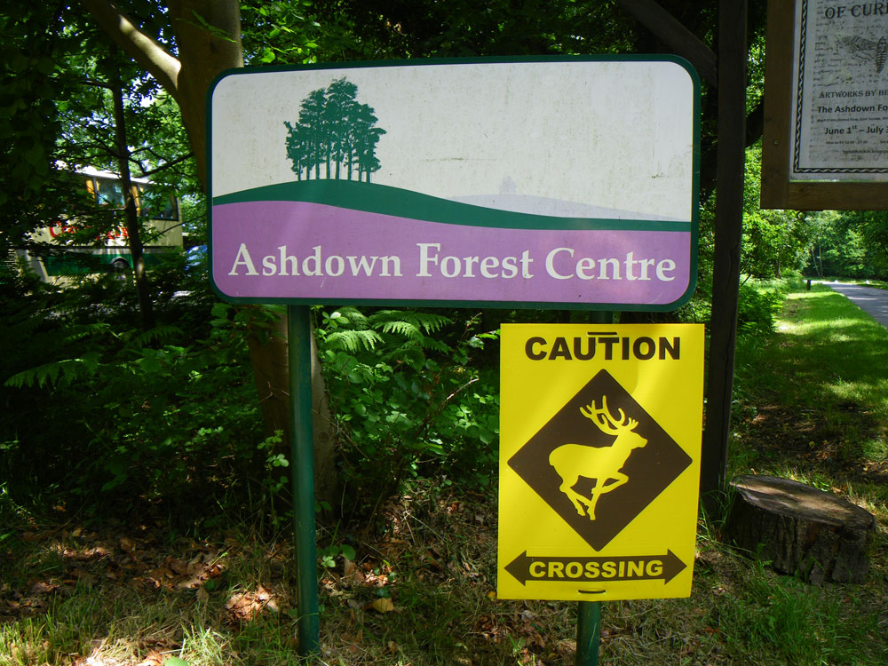 Impact of the pandemic on the Ashdown Forest's budget