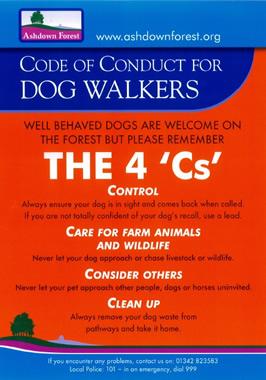 The4Cs