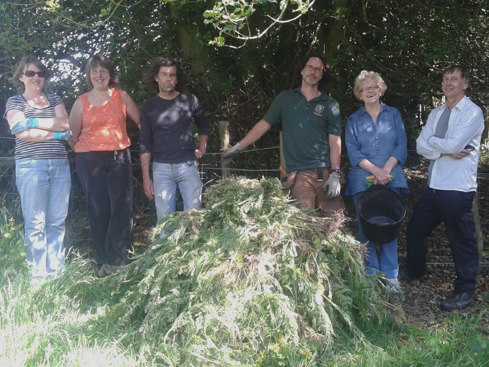 Volunteers with the pile of Ragwort after a couple of hours work in the Meadow