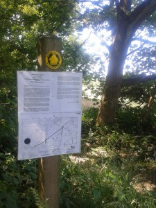 Example of one of the notices displayed on Crowborough Common