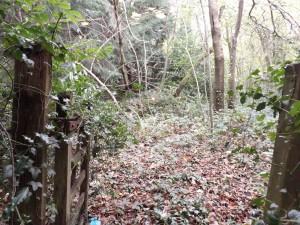 Gate Blackness Road Crowborough