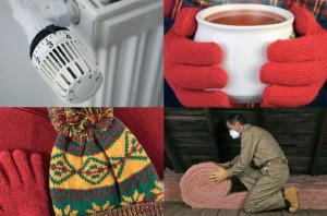 East Sussex County Council free winter home check service