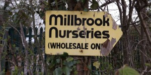 Plant Nursery Millbrook Treblers Road Crowborough