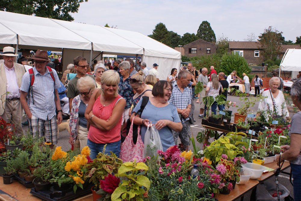 Hospital Fete Plant Stall