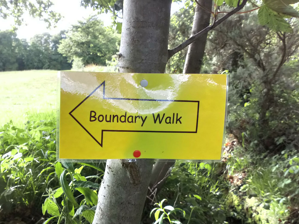 Boundary Walk sign drawing pinned to a tree in 2019 in Crowborough