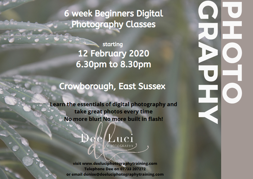 This is a beginners 6 week digital photography class, commencing 12 February 2020 at 6.30pm-8.30pm in Crowborough, East Sussex. You'll take better control of your camera by learning to use the manual settings; and you'll no longer need to use auto or built-in flash. This will mean sharp photos and no more blur! You'll learn the 3 basic essentials (Shutter Speed, Aperture, ISO) to ensure you take great photos every time. The classes will be at Pine Grove, Crowborough, East Sussex. Refreshments will be provided.