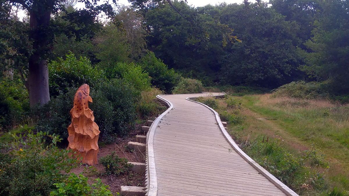 Chainshaw sculpture of a trout in the mid-disatance alongside the boardwalk