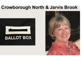 "Johanna Howell is standing in the election for ""Crowborough North & Jarvis Brook"" in the East Sussex County Council elections on 6th May 2021."