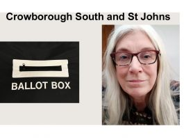 "Pam Tysh is standing in the election for ""Crowborough South & St Johns"" in the East Sussex County Council elections on 6th May 2021."